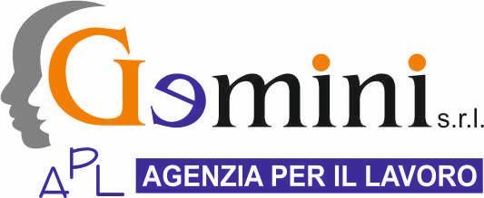 Gemini APL